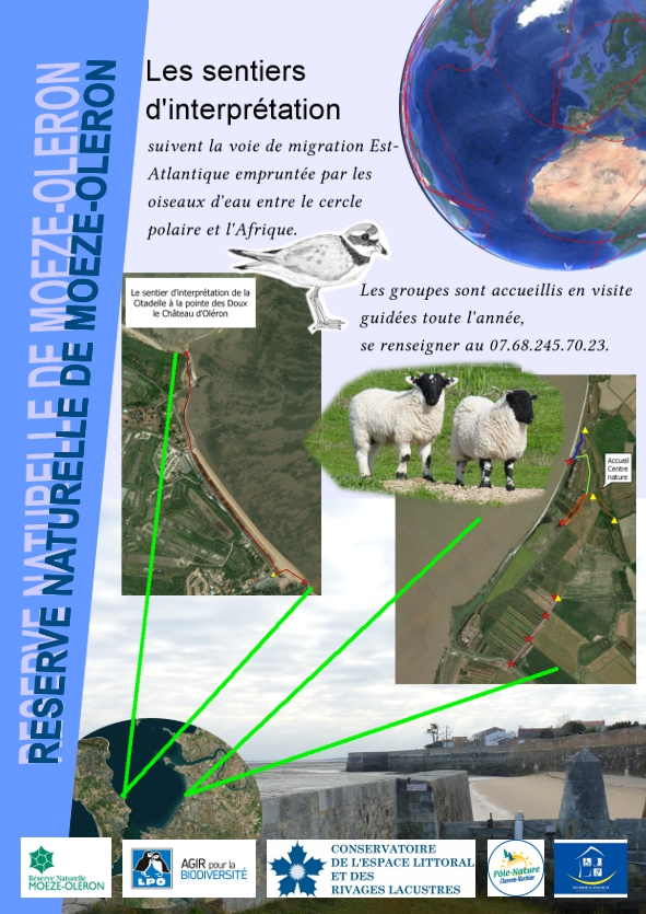 Les sentiers de la réserve naturelle de Moëze-Oléron
