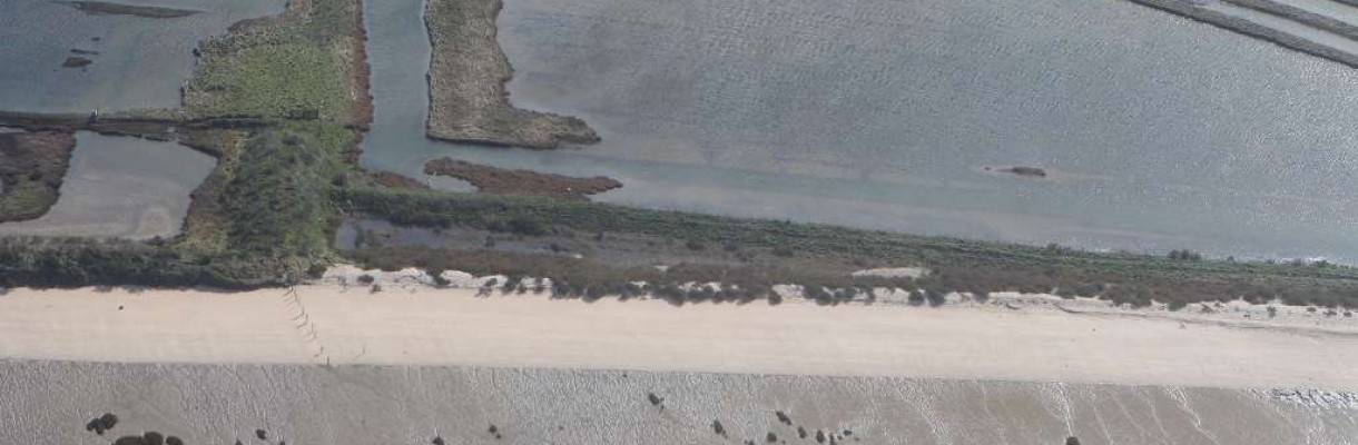 Vue aérienne de la réserve de Moëze-Oléron