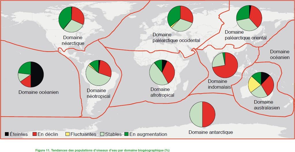 Etat des populations d'oiseaux d'eau-source Wetlands International