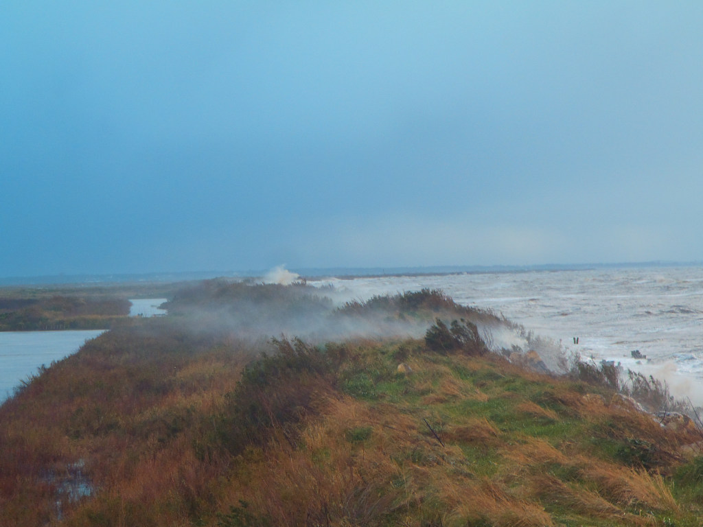 Erosion marine, s'adapter